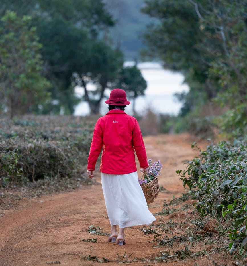 a woman walking in a road carrying a basket